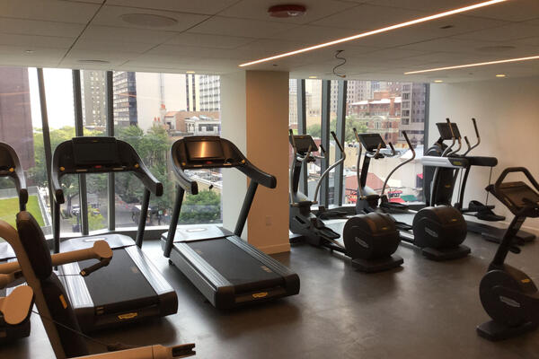 Hotel Construction & Remodeling - Viceroy Hotel Chicago workout area with city view